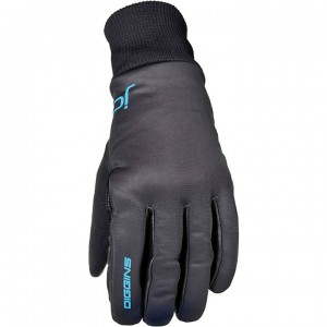 Swix JD Train Glove Women's