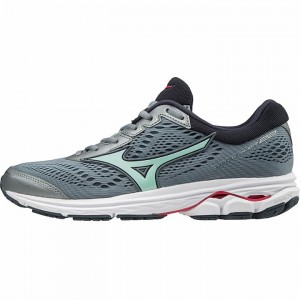 Mizuno Wave Rider 22 Women's