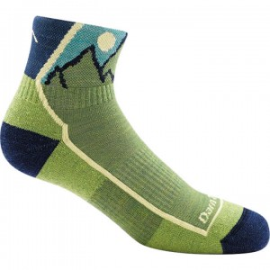 Darn Tough Hiker Jr. 1/4 Sock Light Cushion Socks