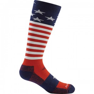Darn Tough Captain Stripe Jr Ultra Light Socks Kid's