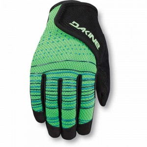 Dakine Prodigy Gloves Kid's