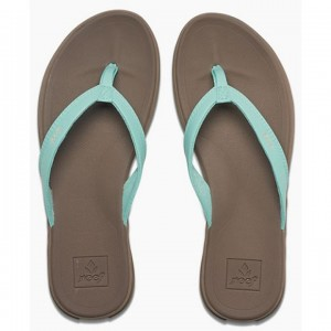 Reef Rover Catch Sandals Women's
