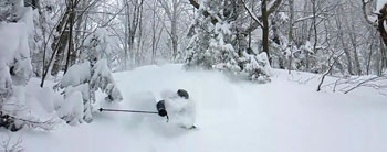 Three of Our Favorite Powder Skis - in Stock Now and On Sale